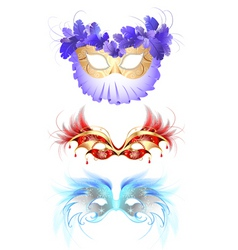 feather mask vector image vector image