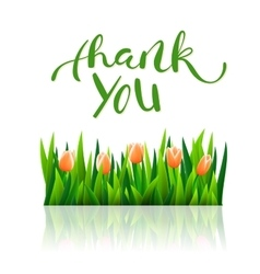 Thank you with tulip flowers vector image