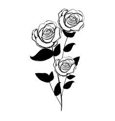 Monochrome sketch with plant of roses with leaves vector