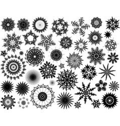 leaf rosettes vector image vector image