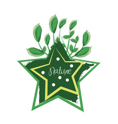 Star design with branches with leaves vector