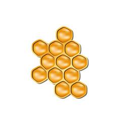 bee honeycomb in orange design with shadow vector image