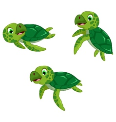 Funny three turtle cartoon vector