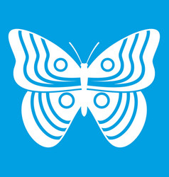 Stripped butterfly icon white vector