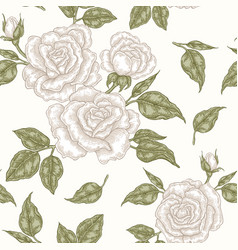 white rose flowers buds and leaves seamless vector image vector image
