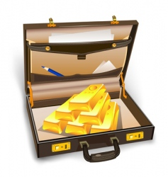 case with gold vector image