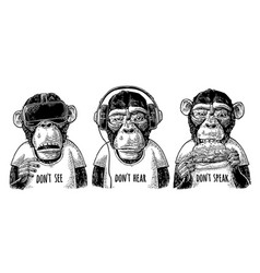 three wise monkeys not see not hear not speak vector image vector image