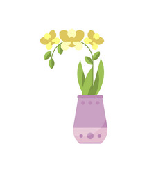 Yellow orchid house plant indoor flower in pot vector