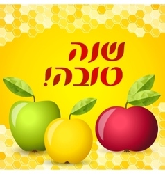 Rosh hashana card - apple and honey vector