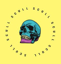 skull color vector image