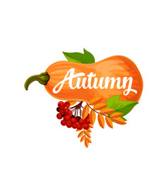 Autumn pumpkin poster of leaf fall vector