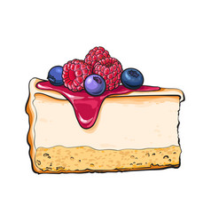 hand drawn piece of cheesecake decorated with vector image