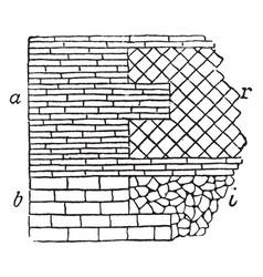 Roman wall masonry opus reticulatum vintage vector
