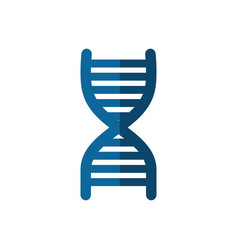 Symbol of dna icon vector