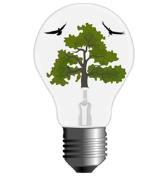 nature bulb vector image vector image