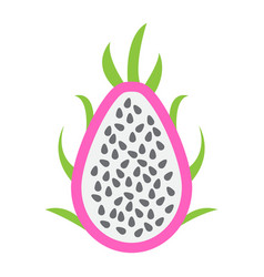 pitaya flat icon dragon fruit and tropical vector image