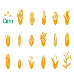 set of icons and logos with corn on a white vector image vector image