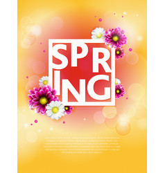 spring background with beautiful colorful flower vector image
