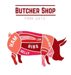 Cuts of pork vector image vector image