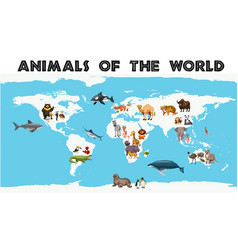 Different types of animals around the world on vector