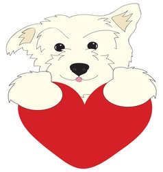 Dog Heart vector image