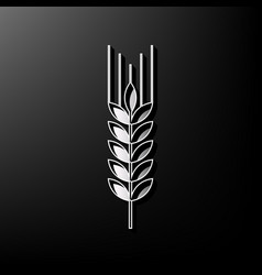 Wheat sign spike spica vector