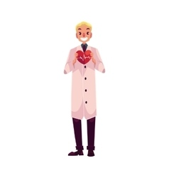 Male cardiac surgeon in lab coat holding heart vector
