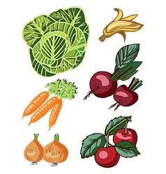 Vegetables and fruits on white vector