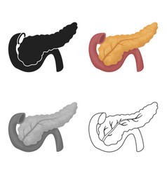 Pancreas icon in cartoon style isolated on white vector