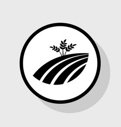 Wheat field sign flat black icon in white vector