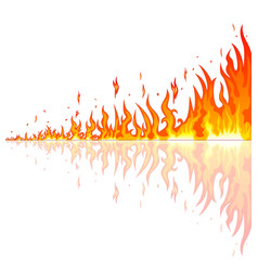 burning fire with reflection vector image vector image