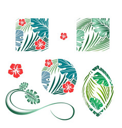tropic palm leaves and flower design collection vector image vector image