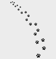 Trail of cat vector