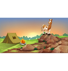 A horse above a rock near a camping tent vector image