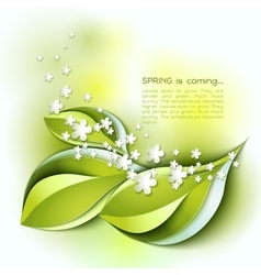Spring abstract background green leaves vector