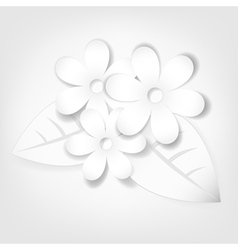 Abstract paper flowers vector image vector image