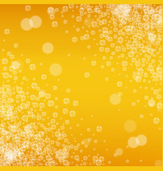 beer background with realistic bubbles vector image vector image