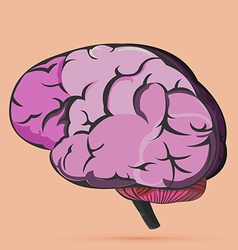 Brain human internal symbol icon vector