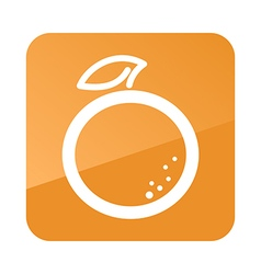 Orange outline icon tropical fruit vector
