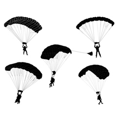 Skydivers vector