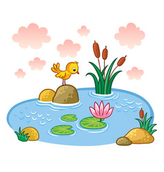 The bird is standing on a rock in a pond vector