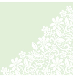 White guipure border on green background vector