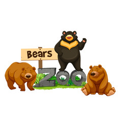 Three bears in the zoo vector