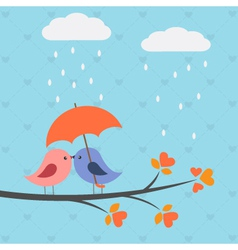 Birds under umbrella vector image