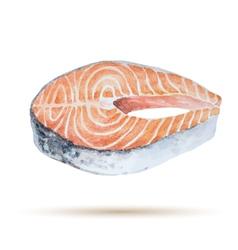 Watercolor steak fish vector
