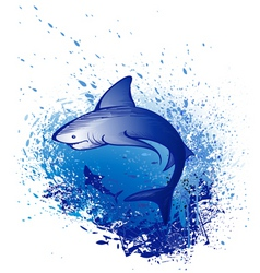 great white shark vector image vector image