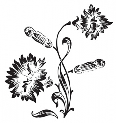 Antique flower ornament engraving vector