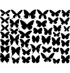 Butterfly shapes vector