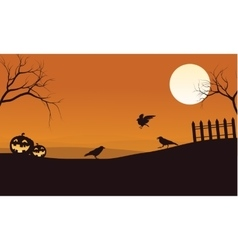 Silhouette of pumpkins and crow Halloween vector image vector image
