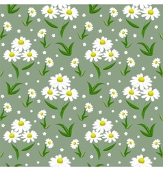 Camomile seamless background vector image vector image